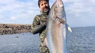 Çanakkale'den 27 kiloluk bir dev çıktı!