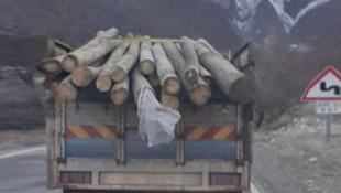 Şoke eden iddia: AK Partili başkan elektrik direklerini satarken yakalandı'