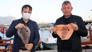 Balon balığından ayakkabı yaptılar