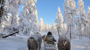 Yakutistan'da sıcaklık eksi 50 derecenin altına düştü
