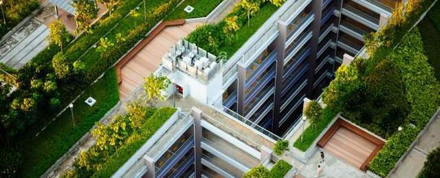 İBB'den dev proje: İstanbul 'Yeşil Çatı' projesiyle yeşillenecek!