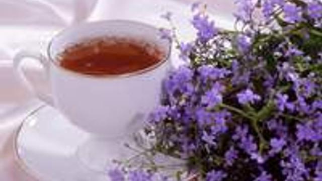 Taylan Kümeli'den zayıflama çayı önerileri