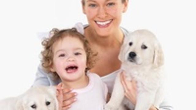 Evcil hayvanlar alerji yapıyor