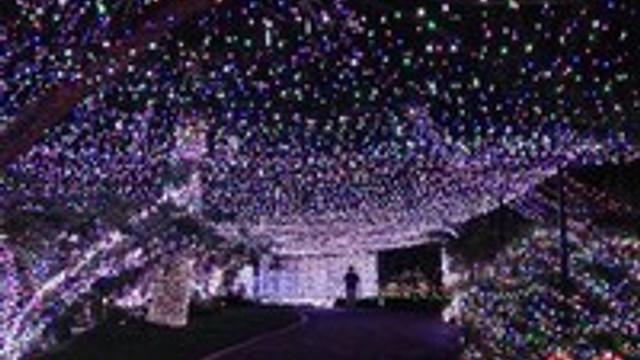 Bu ev 500 bin ampül ile ışıldıyor