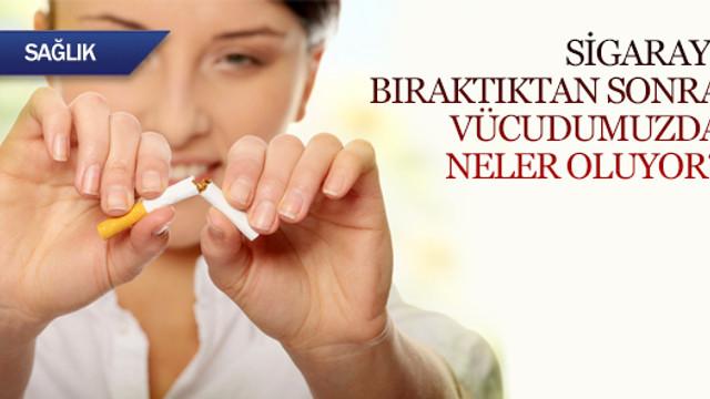 Sigarayı bıraktıktan sonra vücudumuzda neler oluyor?