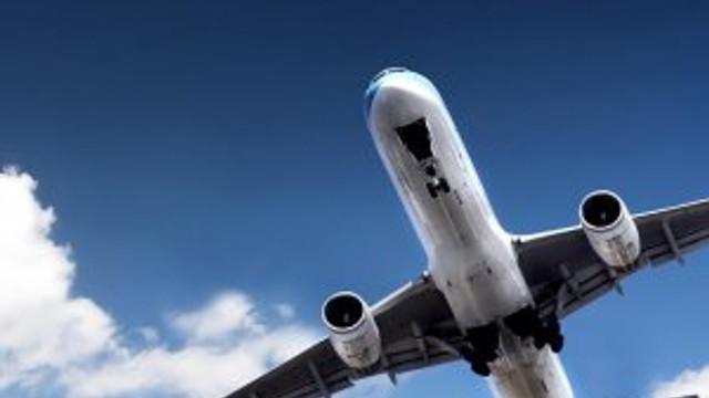 THY pilotu: ''Martıya çarptık''