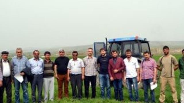 Çorum Çiftcisi Alternatif Üründe Yeni Bir Çeşitle Tanışıyor