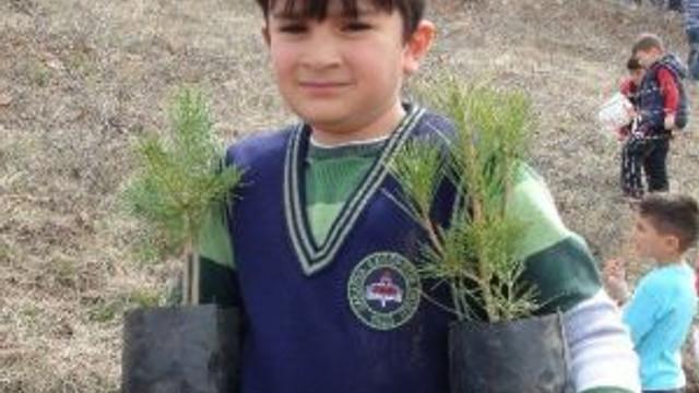 Yozgat'ta İlkokul Birinci Sınıf Öğrencileri Fidan Dikti