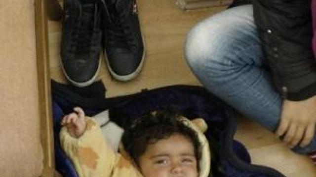 Edirne'de 7 Iraklı Kaçak Yakalandı, 1 Organizatör Tutuklandı