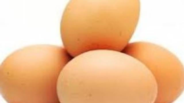 Organik diye kirli yumurta yediriyorlar !