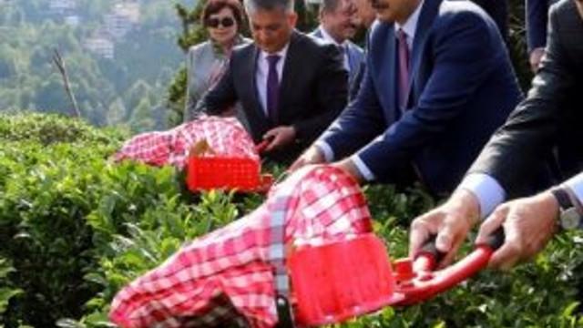 Cumhurbaşkanı Erdoğan çay kesti !
