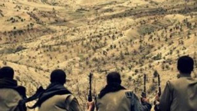 PKK'ya çifte darbe: Üst düzey iki isim yakalandı