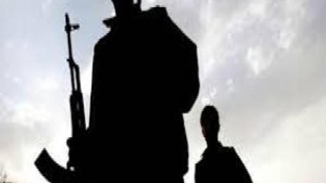 Elazığ'da 2 PKK'lı öldürüldü !