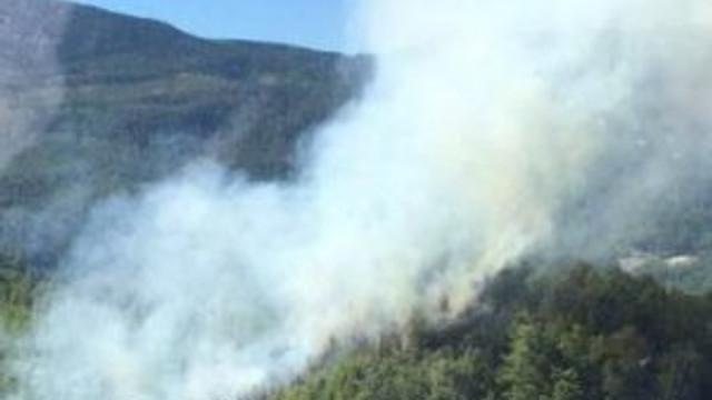 Antalya'da orman yangını !