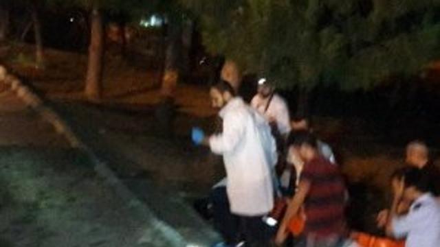 İstanbul'da ağaca asılı bir ceset bulundu