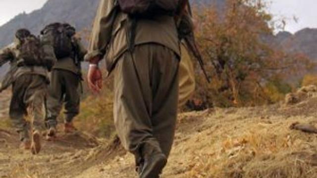 Dağlık alana operasyon: 5 PKK'lı öldürüldü