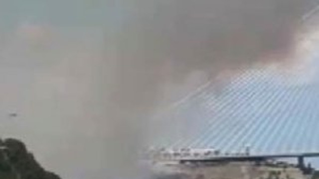 Yavuz Sultan Selim yakınında orman yangını