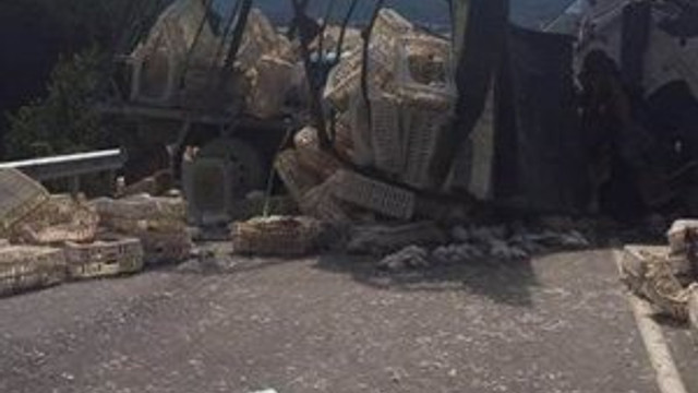 Bolu ve Sakarya'da kaza: 5 ölü