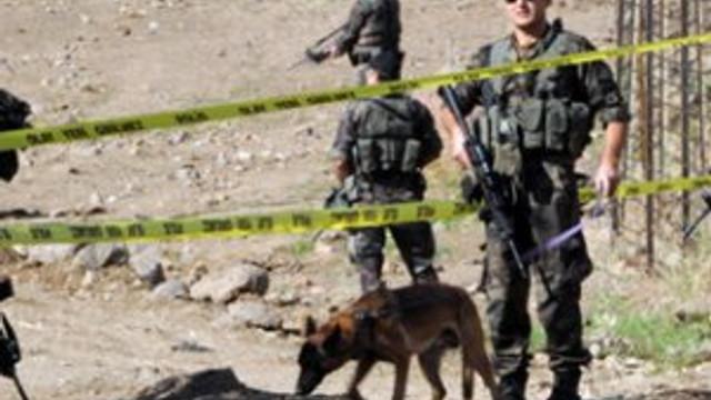 PKK'nın Devlet buraya giremez dediği bölge temizlendi