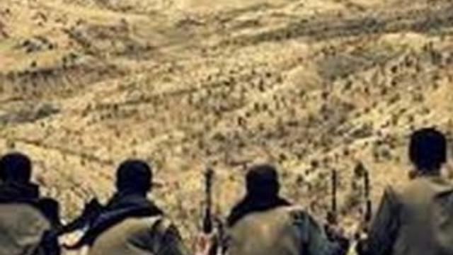 Ele geçirilen üst düzey PKK'lı o mu ?
