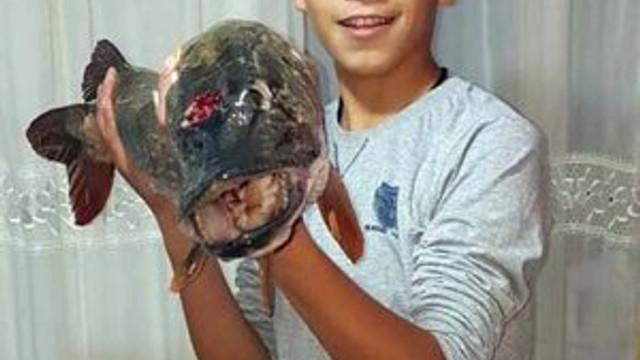 Amatör balıkçı dev turna balığı tuttu