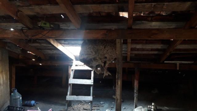 Çatıya baz istasyonu kuracaklardı, kabusu yaşadılar !