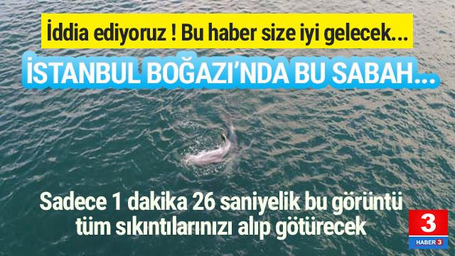 İstanbul Boğazı'nda sabah sürprizi