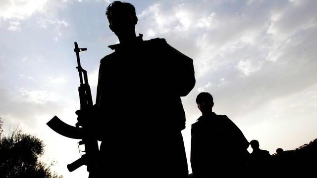 Hakkari'de 2 terörist öldürüldü