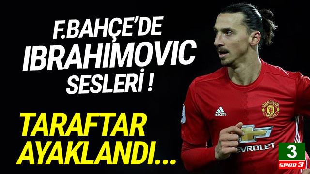 Fenerbahçe'de Ibrahimovic heyecanı