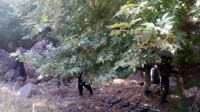 PKK'lı teröristler kaçırdıkları çobanı infaz etti