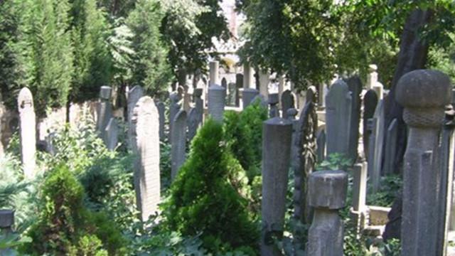 Eyüp Sultan Mezarlığı bakıma alınıyor