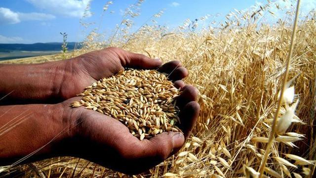 Dünyada bir ilk: Türkiye'ye Bitcoin ile buğday ticareti