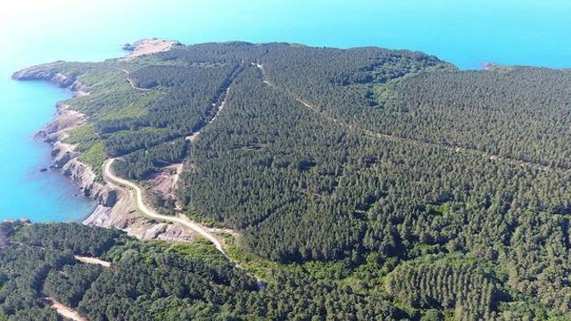 İşte nükleer santral Sinop'ta buraya kurulacak