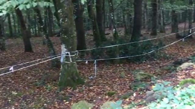 Cemal Kaşıkçı Belgrad Ormanı'nda aranıyor
