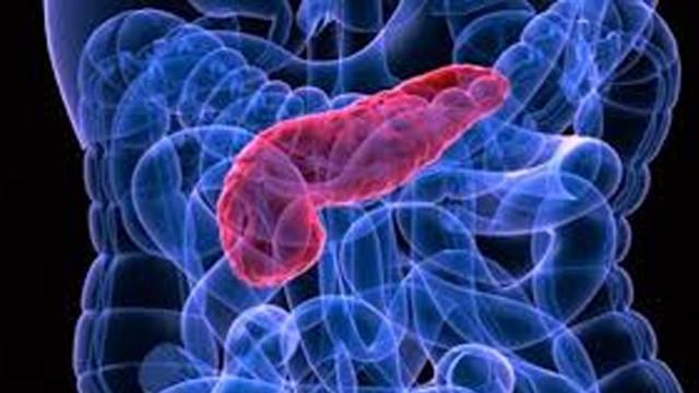 Pankreatit Belirtileri