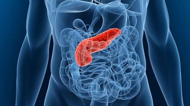Pankreatit Nedenleri