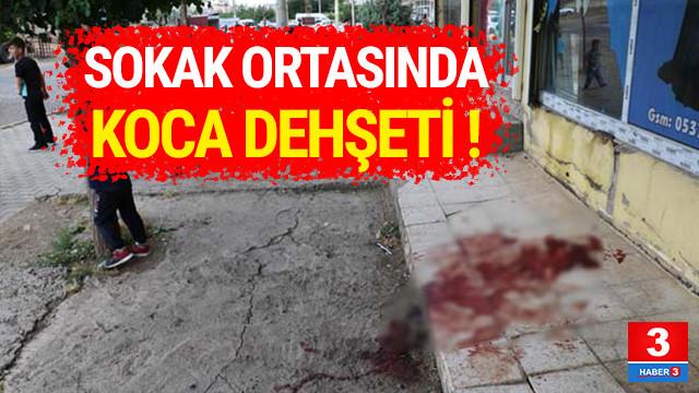 Diyarbakır'da dehşet ! Bıçakla saldırdı