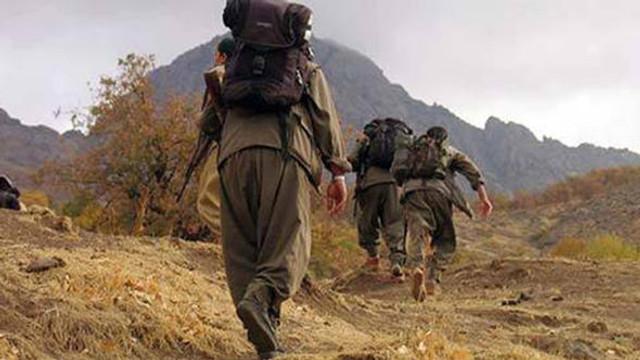 TSK öldürülen teröristlerin sayısını açıkladı