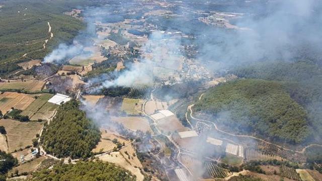 Ciğerlerimiz yandı ! Tatil cennetinde orman yangını