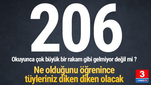 Rakamlar korkunç: 6 ayda 206 kadın öldürüldü