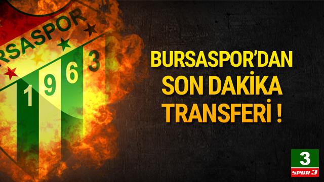 Bursaspor Polonylalı yıldızı kaptı !
