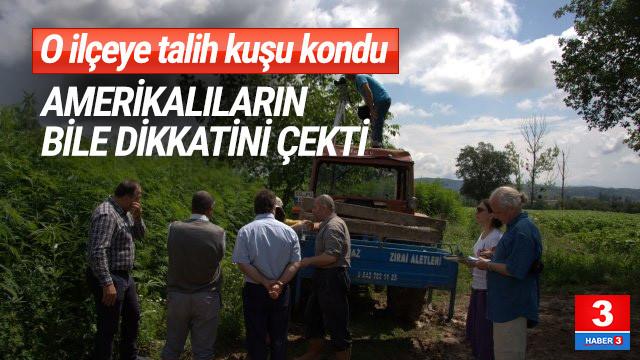 Vezirköprü, Türkiye'nin kenevir üretim merkezi olacak