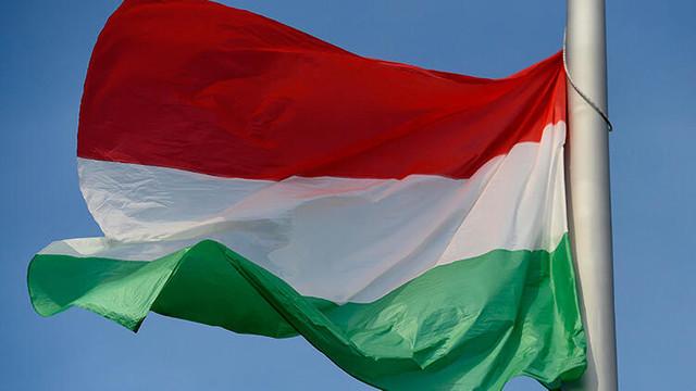 Macaristan'dan Barış Pınarı Harekatı'na destek