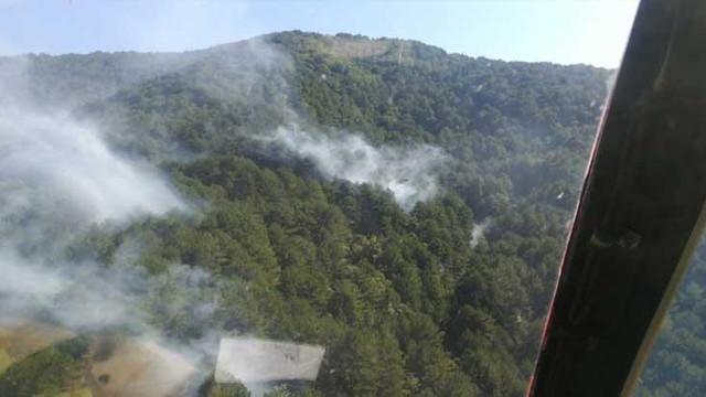 Balıkesir'deki orman yangını kontrol altına alındı