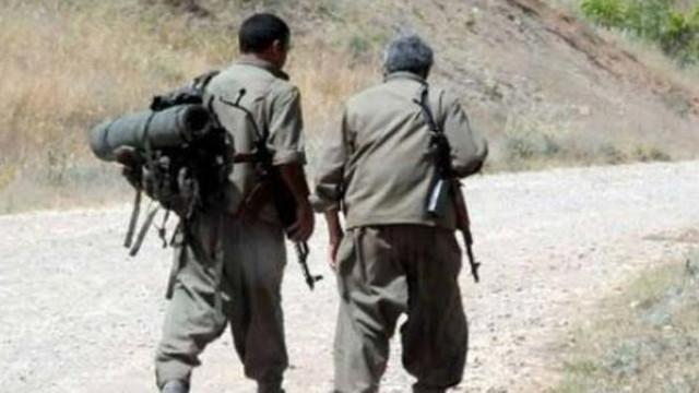 PKK'da çözülme devam ediyor: Gri listedeki 2 terörist teslim oldu