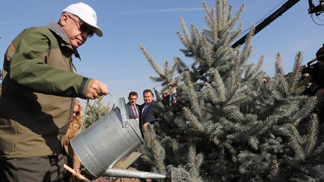11 milyon fidan kampanyasına ormancılardan tepki !