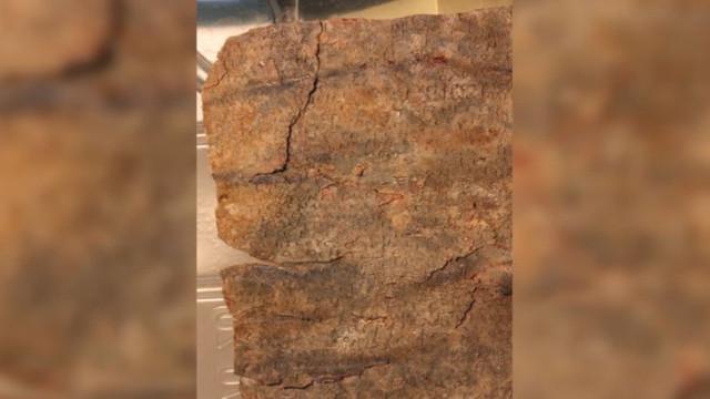 İsrail'de bin 500 yıllık lanet bulundu