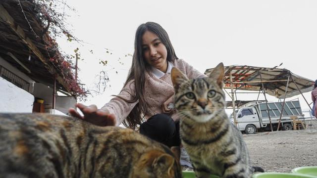 Sokak kedileri için harçlığı yetmeyince bakın ne yaptı