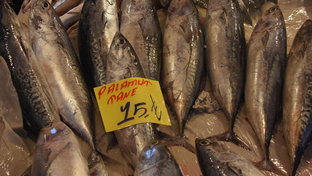 Balık alırken dikkat! Palamut diye bunu satıyorlar!