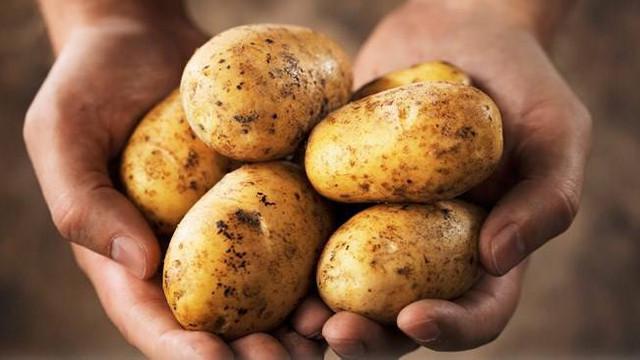 İthal patateste skandal iddia ! Patatesi Bakan'ın firması mı getirecek?